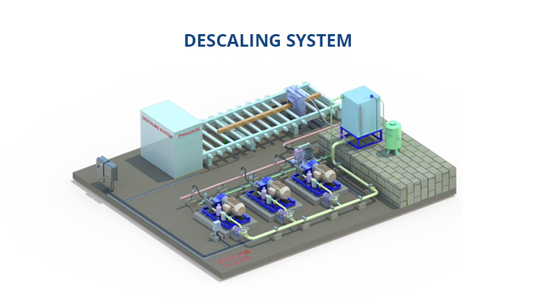 Descaling system